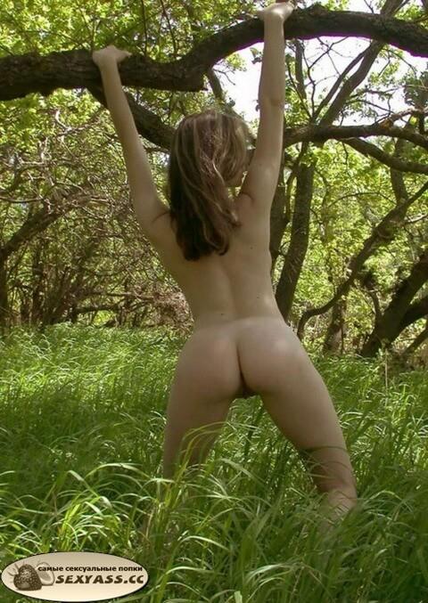 Голые попы в лесу