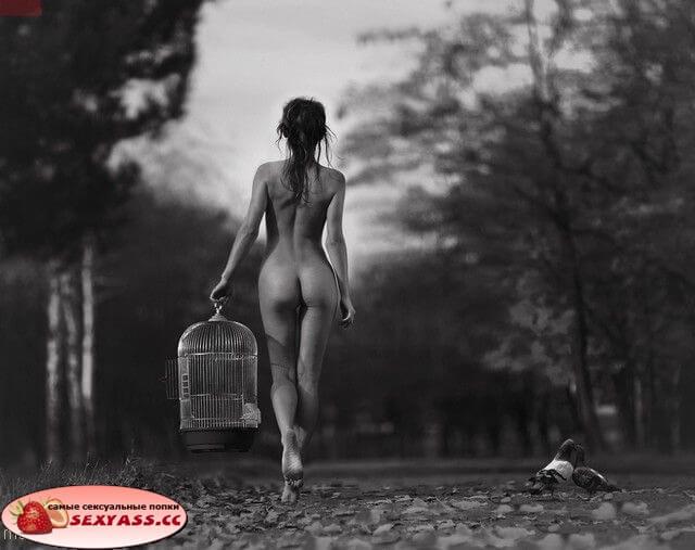 Безцеремонные задницы мокрохвосток — фото